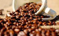 コーヒーはビタミンCを破壊する?コーヒーはビタミン泥棒